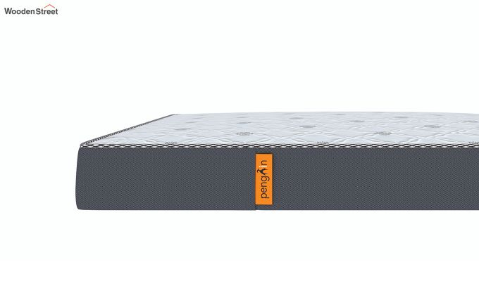 Penguin Ortho-Memory Mattress (6 inch, Queen Size, 72 x 60)-6
