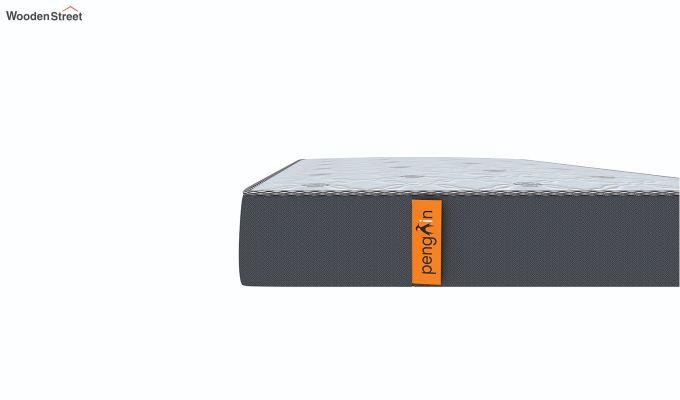Penguin Ortho-Memory Mattress (6 inch, Single, 78 x 36)-6