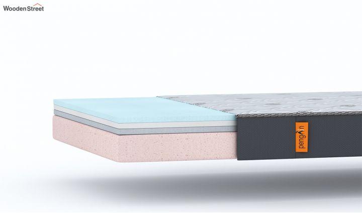 Penguin Ortho-Memory Mattress (6 inch, Single, 78 x 36)-7